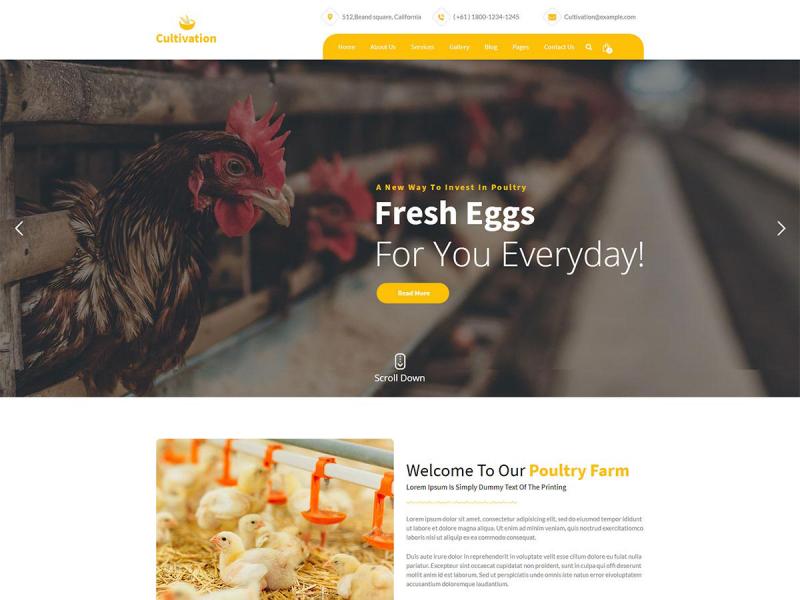 Landwirt Website